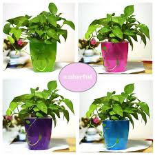 aliexpress com buy mkono 3pcs self watering pot automatic