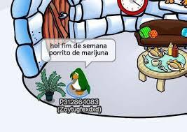 Club Penguin Memes - memes de club penguin wiki universo amino amino