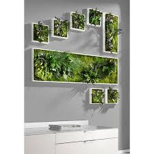 echtpflanzenbilder 3 jahre garantie pro idee - Pro Idee Küche