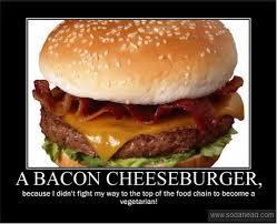 Meme Burger - burger meme jpg 537 435 humor pinterest