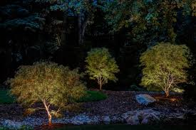 Landscape Lighting Utah - why lighting your japanese maple tree is a must