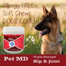 4 types of belgian sheepdogs amazon com pet md hip and joint supplement glucosamine for dogs