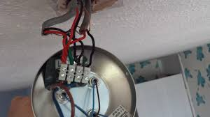 Wiring A Ceiling Light Fixture Ceiling Light Fixture Two Black Wires Elhouz Lentine Marine 12338