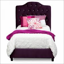 Twin Xl Quilts Coverlets Bedroom Amazing Purple Twin Bed In A Bag Lavender King Size