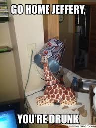 Drunk Giraffe Meme - go home you re drunk lol pinterest funny animal quotes and meme