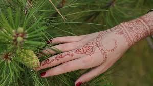 with mehndi henna closeup stock footage