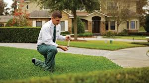 economic importance of landscaping parks green space fewer
