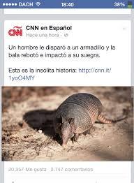 Armadillo Meme - don armadillo meme subido por dach0001 memedroid