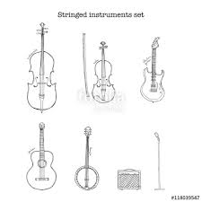 hand drawn sketch illustration of stringed instruments set with