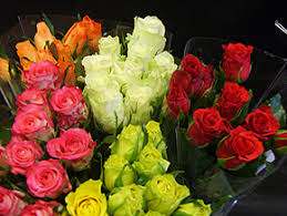 Wholesale Roses Wholesale Flowers And Florists Sundries At Flowers For Florists