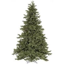 frasier fir tree wayfair