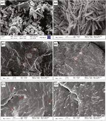 effects of surface modification of halloysite nanotubes on the