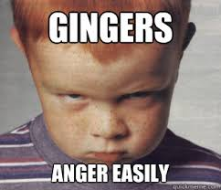 Funny Ginger Memes - gingers anger easily angry ginger quickmeme