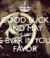 May The Odds Be Ever In Your Favor Meme - good luck and may the odds be ever in your favor poster nialla