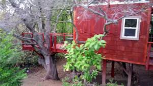 childrens tree house design treehouse plans youtube