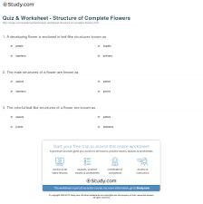 quiz u0026 worksheet structure of complete flowers study com