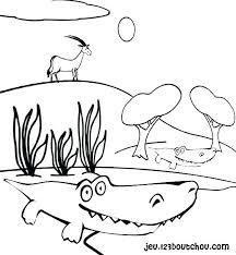 Coloriage De Crocodile Crocodile Crocodile Crocodile Crocodile A