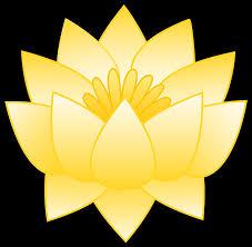 yellow lotus flower free clip art