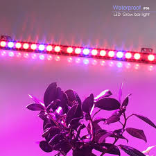 Blue Led Light Strip by Online Get Cheap Indoor Led Lamp Aliexpress Com Alibaba Group
