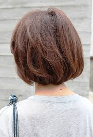 slight bob hairstyle back view short brown bob hairstyle hair ideas pinterest