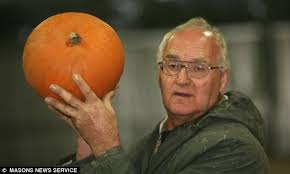 Smashing Pumpkins Halloween - what smashing pumpkins british farmer harvests three million jack