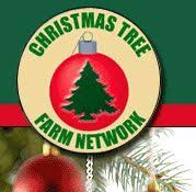 237 best christmas tree farm images on pinterest christmas time