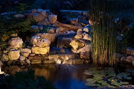 koi health and pond care