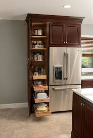 Utility Cabinet For Kitchen by 106 Best Cabinet Ideas Images On Pinterest Home Kitchen And