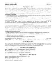 Resume Summary Paragraph Examples by Ceo Resume Example
