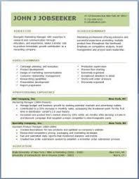 professional resumes attractive professional resumes templates www gfyork wp