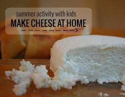 summer activity with kids making cheese at home whileshenaps com