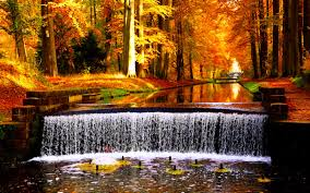 waterfalls river fall forest park waterfall leaves autumn colors