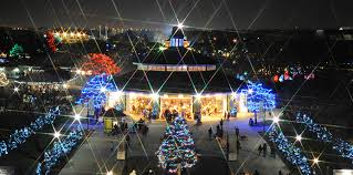 brookfield zoo winter lights 5 things to do in chicago dec 2 4