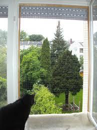 katzenschutz balkon balkon und fenstersicherungen katzenschutz bonn rhein sieg ev