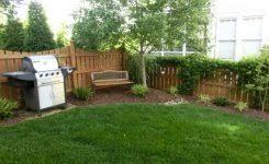 Backyard Ideas For Privacy Beautiful Landscaping Ideas For Privacy Frugal Landscaping For