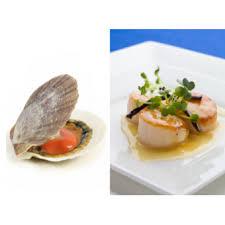 cuisiner le corail de jacques restaurant noix de jacques avec corail 1kg restomarket fr