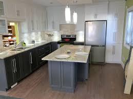 cuisine 2 couleurs cuisine 2 couleurs dcoration de cuisine en noir et blanc osco