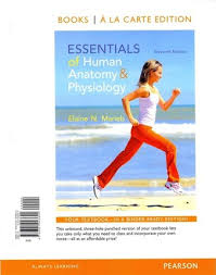 Human Anatomy And Physiology Textbook Online Essentials Of Human Anatomy And Physiology Books A La Carte