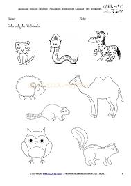 pet animals worksheet activity sheet 4