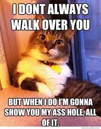 We Know Memes - dopl3r com memes jdont always walkover you butwhenidoim gonna