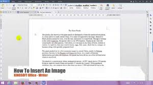 How To Insert A Photo In Resume How To Insert An Image In Kingsoft Writer For Windows Youtube