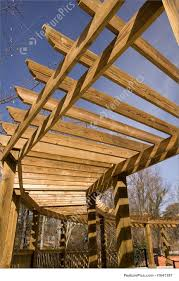 picture of curved walkway trellis