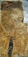restoration camera picta medieval wall painting news 2 2014
