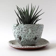 textured cactus planter mike mcdowell flickr
