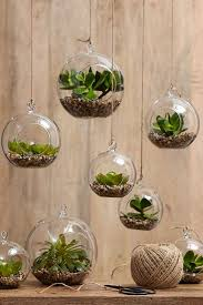 Hanging Home Decor 7 Stylish Ways To Use Indoor Plants In Your Home U0027s Décor Indoor