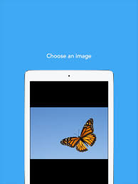 colorscape turn your photos into coloring pages on the app store