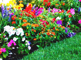 home decor beautiful flower garden designs backyard flower