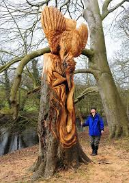 tree mendous banksy style sculptor leaves stunning carvings in