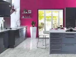 cuisine gris et cuisine gris fushia http oacloud cuisine gris fushia