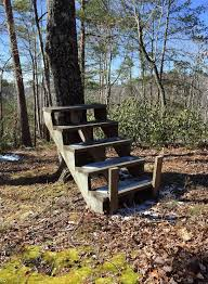 deep in the nc woods there are these stairs that lead to